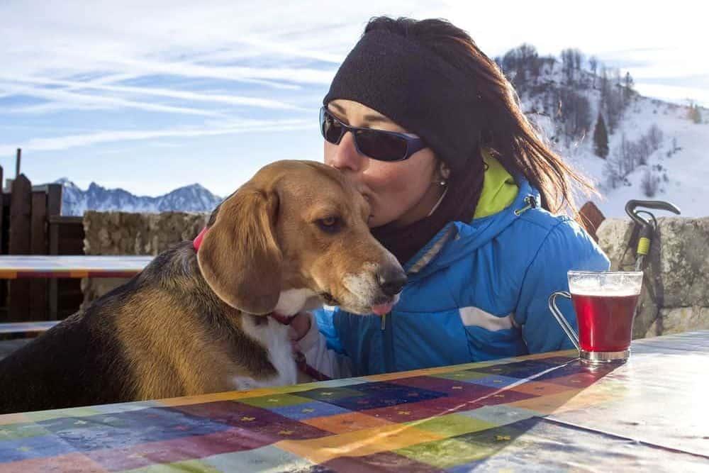 vacanza-trentino-con-cane